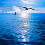 16401411-alba-sotto-le-vele-sea-view-mare-infinito-orizzonte-infinito-gli-unici-punti-di-vista-visibili-sul-b-150x150