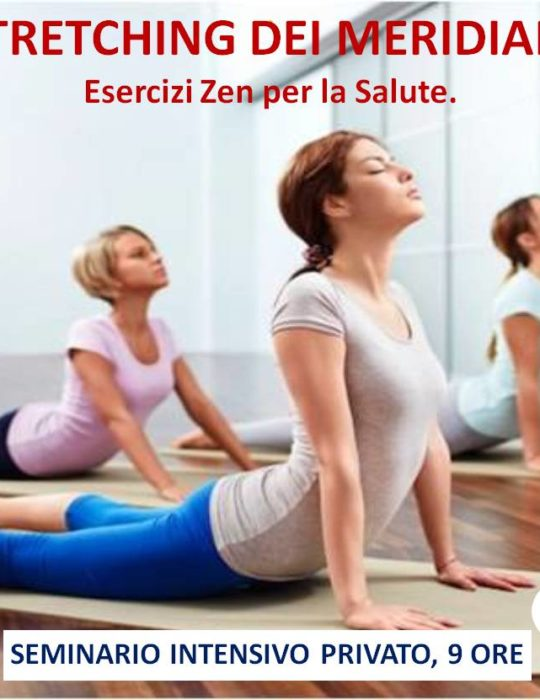SEMINARIO INTENSIVO PRIVATO ON-LINE, 9 ORE. STRETCHING DEI MERIDIANI. METODO MC